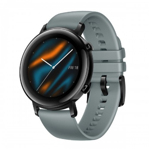 Huawei Watch GT2 B19P